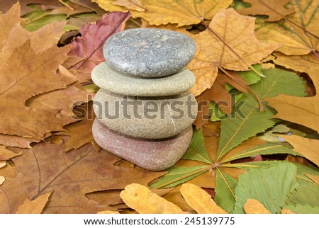 Image of stones and autumn leaves - stock photo