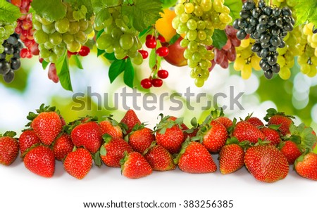 image of strawberries and grapes  close-up - stock photo