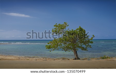 image of the Caribbean Sea, offshore natural landscape of Cuba, Cuban beach in the small town of Baracoa
