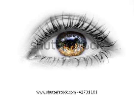 Image of the human eye with fire in the eyes