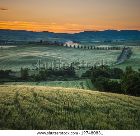 image of typical tuscan landscape - stock photo