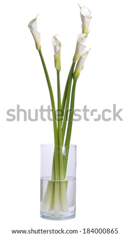 Image of white calla lilies on glass with water against white background  - stock photo