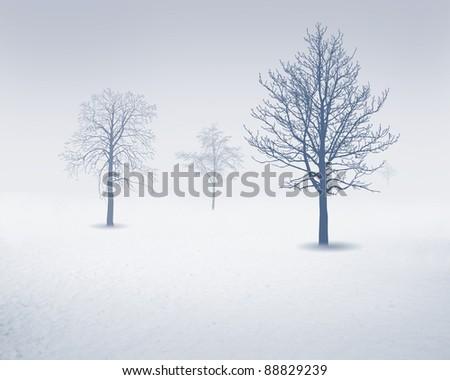 Image of white snow tree on a white background - stock photo