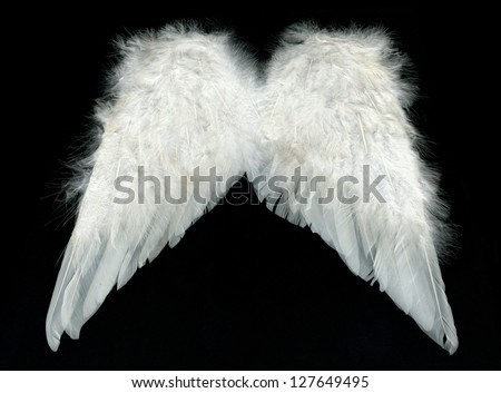 Image of white wings over black background - stock photo