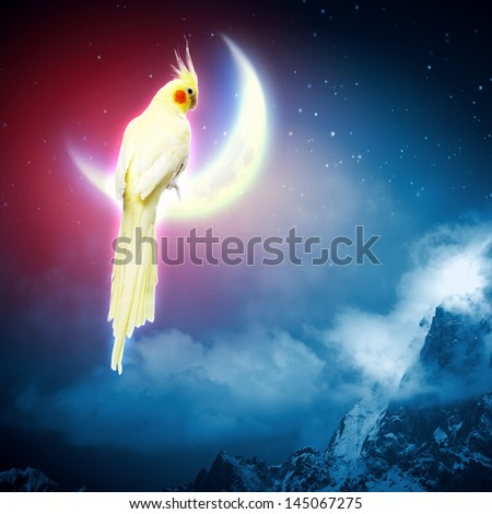 Image of yellow parrot sitting on moon - stock photo