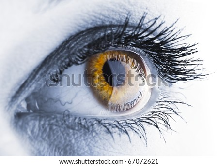 Image was stylised for  accent  and color contrast/eye/eye closeup - stock photo