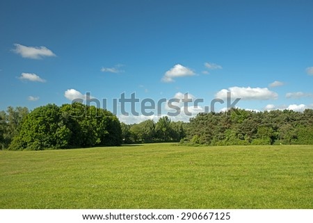 Image with room for copy space of hills, trees, green grass and blue sky with white fluffy clouds - stock photo