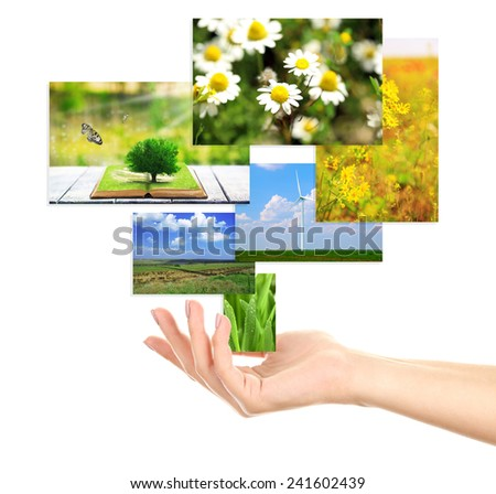 Images of nature objects in hand isolated on white - stock photo