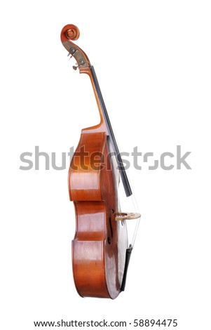 Images of the classical contrabass. Isolated on white background