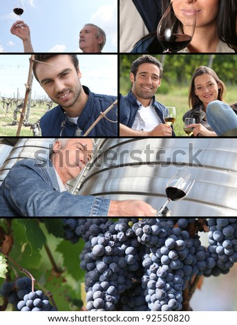 Images of the wine industry - stock photo
