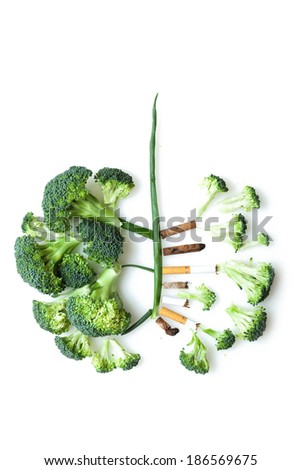 Imitation of a smoker�s lungs formed by broccoli and cigarette butts