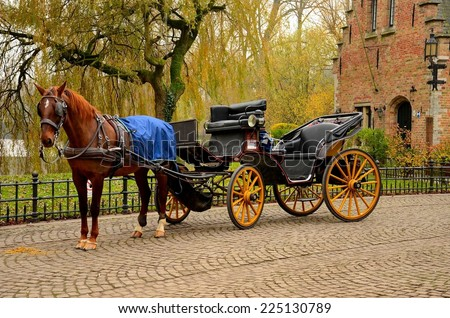 Immaculate horse and carriage Bruges Belgium. A beautiful brown horse hitched to a four wheel horse carriage. In the background is a body of water and a red brick house. Brugge, Belgium.  - stock photo