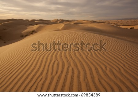 Imperial Dunes at sunset - stock photo