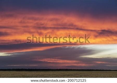 Impressive sunset over a wheat crop in beautiful Romania. - stock photo