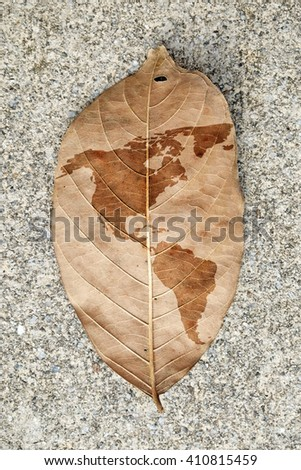 Imprint of the map of the continent of the Americas on a browning leaf.  - stock photo