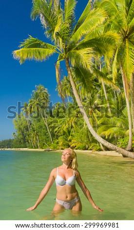 In a Coconut Grove Woman In Bikini  - stock photo