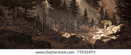 In a forest looking upstream at a wolf crossing a mountain stream. - stock photo