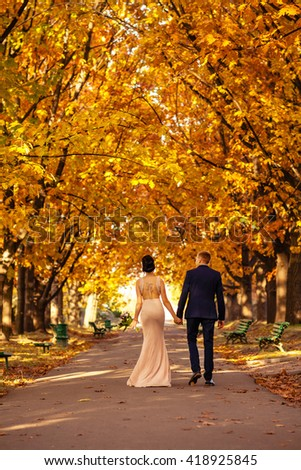 In love couple walking in autumn park. Bride and groom walking in  park.