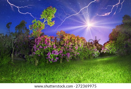 In May, Kyiv, Ukraine, blooming lilacs in the botanical garden and other flowers that citizens lovingly grown on the slopes of the Dnieper River, decorating background hometown - stock photo