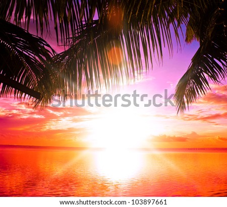 In Paradise Exotic Outdoor - stock photo