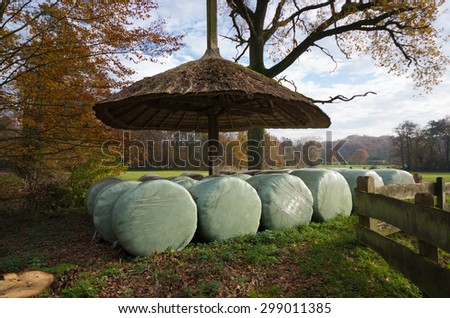in plastic wrapped hay bales under a reed shelter - stock photo