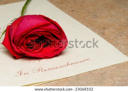 In Remembrance - stock photo
