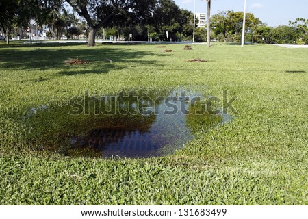 In some park grass in Fort Lauderdale, Florida is a sewer storm drain clogged with water from a recent rain storm on a sunny autumn day. - stock photo