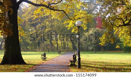 in the autumn park - stock photo