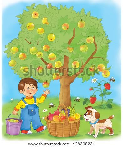 Cartoon Apples Basket ...