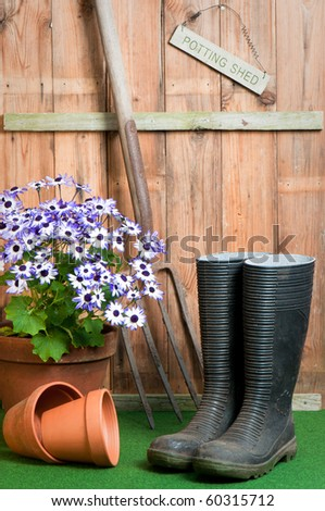 In the garden potting shed, garden concept with senetti potted plant, wellington boots and garden fork - stock photo