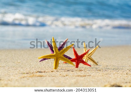In the Mood for Love - happy Starfish - stock photo