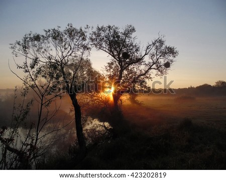 In the morning was a very thick fog. But as soon as the sun came up, everything exploded in bright orange colors. It was a wonderful sunrise, fog and a beautiful sunrise. The fog became orange. - stock photo