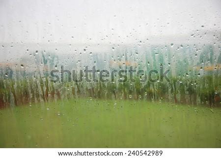 In the rain - stock photo