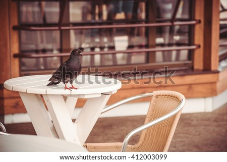 In the street cafe - stock photo