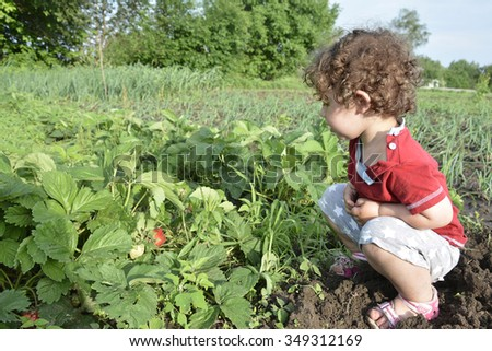 In the summer in the garden with strawberry sits a little girl. She has curly hair.