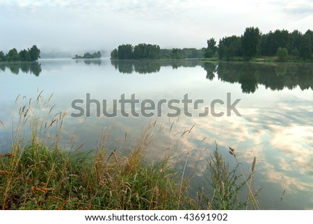 In the summer morning - stock photo