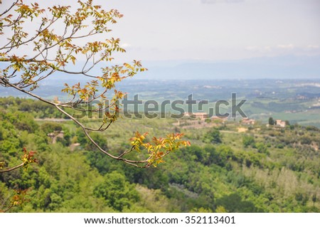 in the Tuscan countryside with tree in the foreground - stock photo