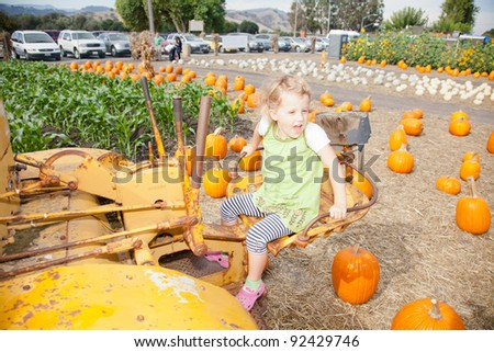 In the United States, the carved pumpkin was first associated with the harvest season in general, long before it became an emblem of Halloween. - stock photo