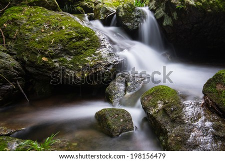 In the valley of streams and waterfalls  - stock photo
