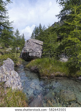 In the woodland, among streams, small lakes and larches (Monte Rosa Massif, Ayas Valley, Italy).