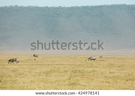 Incredible wildlife landscape in the african savanna - stock photo