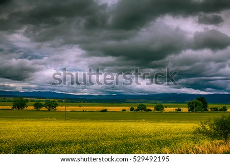 Incredibly gloomy sky over a flowery field in Slovakia