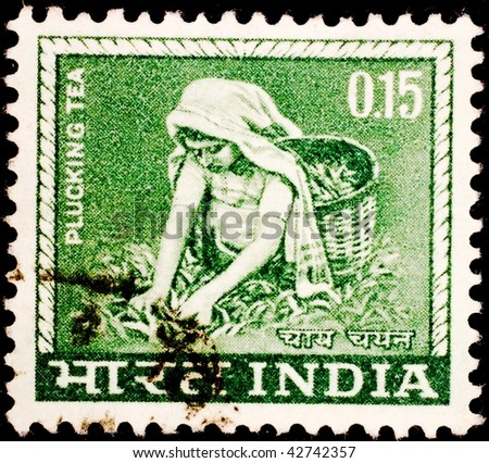 INDIA - CIRCA 1960: A stamp printed in India shows image of a woman plucking tea, circa 1960 - stock photo