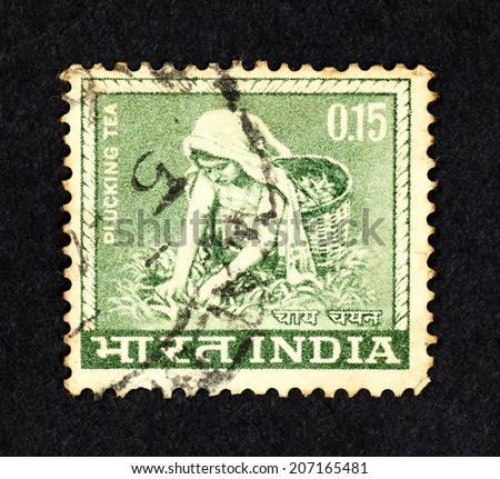 INDIA - CIRCA 1965: Green color postage stamp printed in India with image of a tea plantation laborer plucking tea leaves.