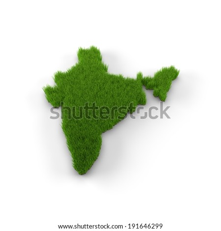 India map made of grass. High quality 3D illustration.  - stock photo