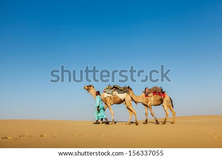 India Rajasthan travel background - Indian cameleer (camel driver) with camels in dunes of Thar desert. Jaisalmer, Rajasthan, India - stock photo