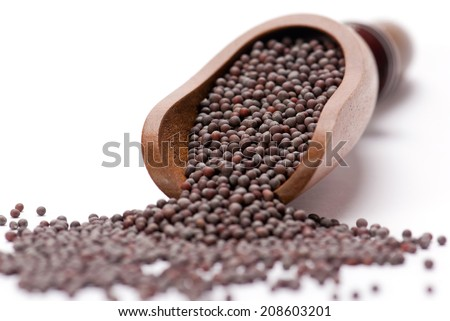 Indian Brown Mustard Seeds  - stock photo