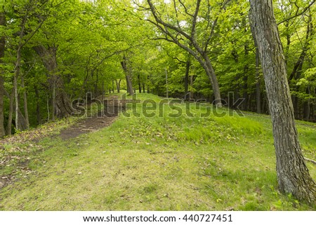 Indian Burial Mounds  - stock photo