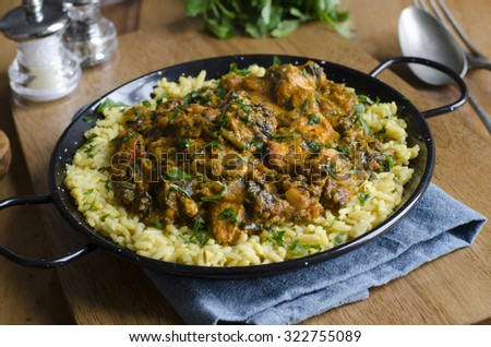 Indian chicken saag masala with a creamy aromatic onion, spinach and tomato sauce - stock photo