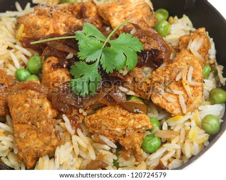 Indian chicken tikka biryani curry in balti dish - stock photo
